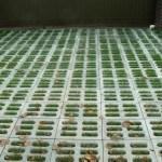 Декоративный вазон из бетона для укладки вровень с землей