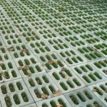 фото газонной решетки
