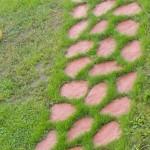 фото тропинки из камня
